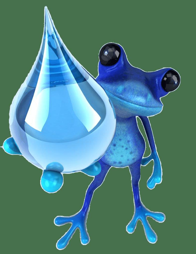 Blu Frog Plumbing