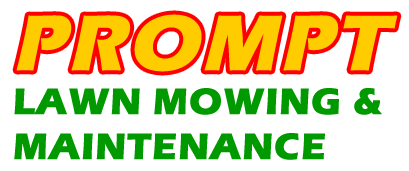 Lawn Mowing Burpengary
