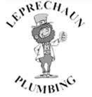 Leprechaun Plumbing